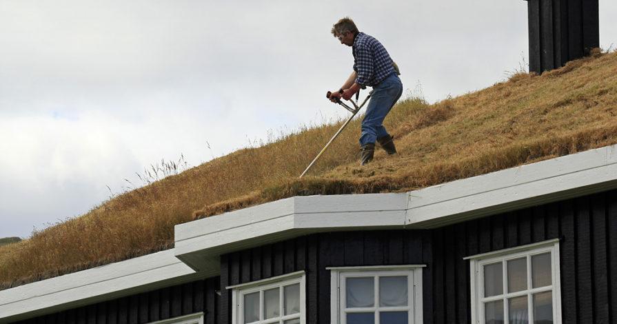 Koszenie trawy na dachu na Wyspach Owczych