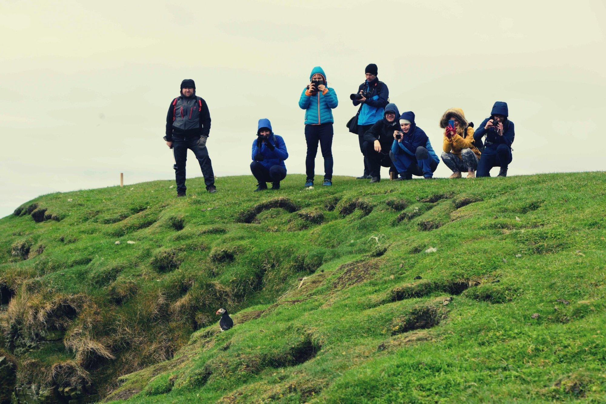 Turyści na Mykines fotografują moaskonury
